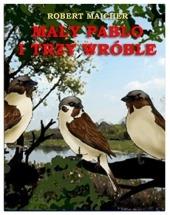 Darmowy ebook Mały Pablo i trzy wróble / Robert Maicher