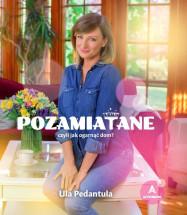 """Książka """"Pozamiatane, czyli jak ogarnąć dom?"""" - Ula Pedantula – (Ula Chincz)"""